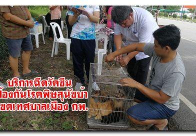 บริการฉีดวัคซีนป้องกันโรคพิษสุนัขบ้าเขตเทศบาลเมือง กพ.