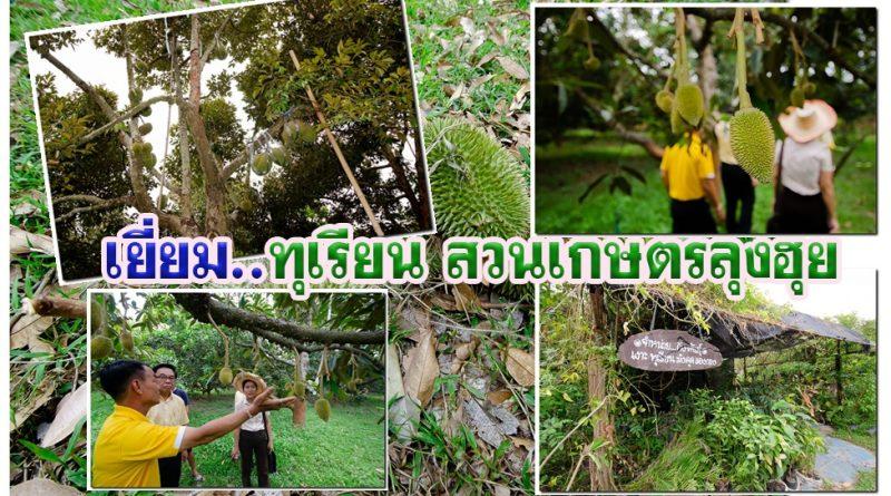 เกษตร..เยี่ยมสวนเกษตรลุงฮุย ทุเรียน เจออากาศร้อน ผลผลิตออกช้า